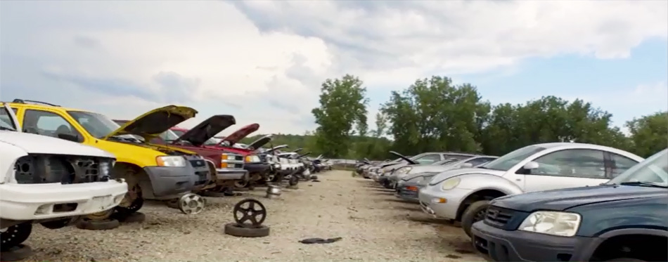A1 Crashed Cars You Pull It Is A Self Serve Auto Salvage Yard